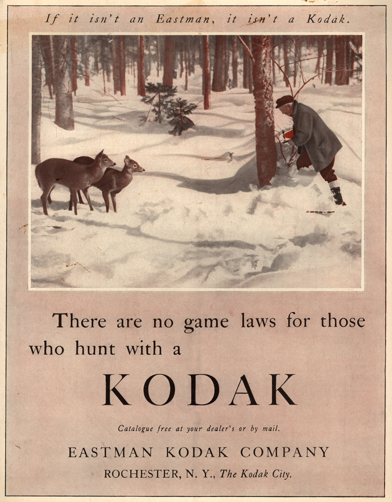 There are No Game Laws for Those Who Hunt with a Kodak advertisement