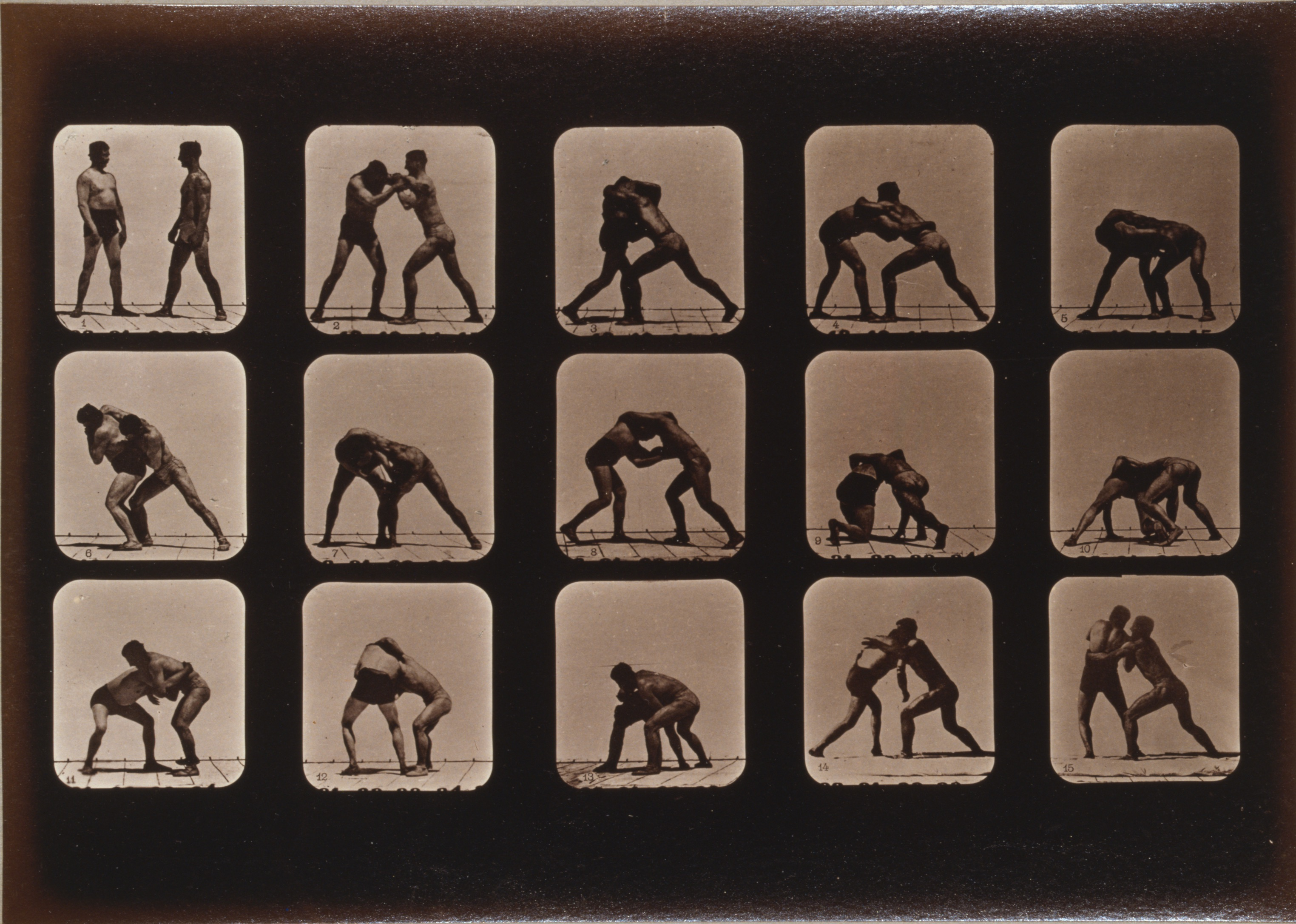 Eadweard Muybridge, Athletes Wrestling