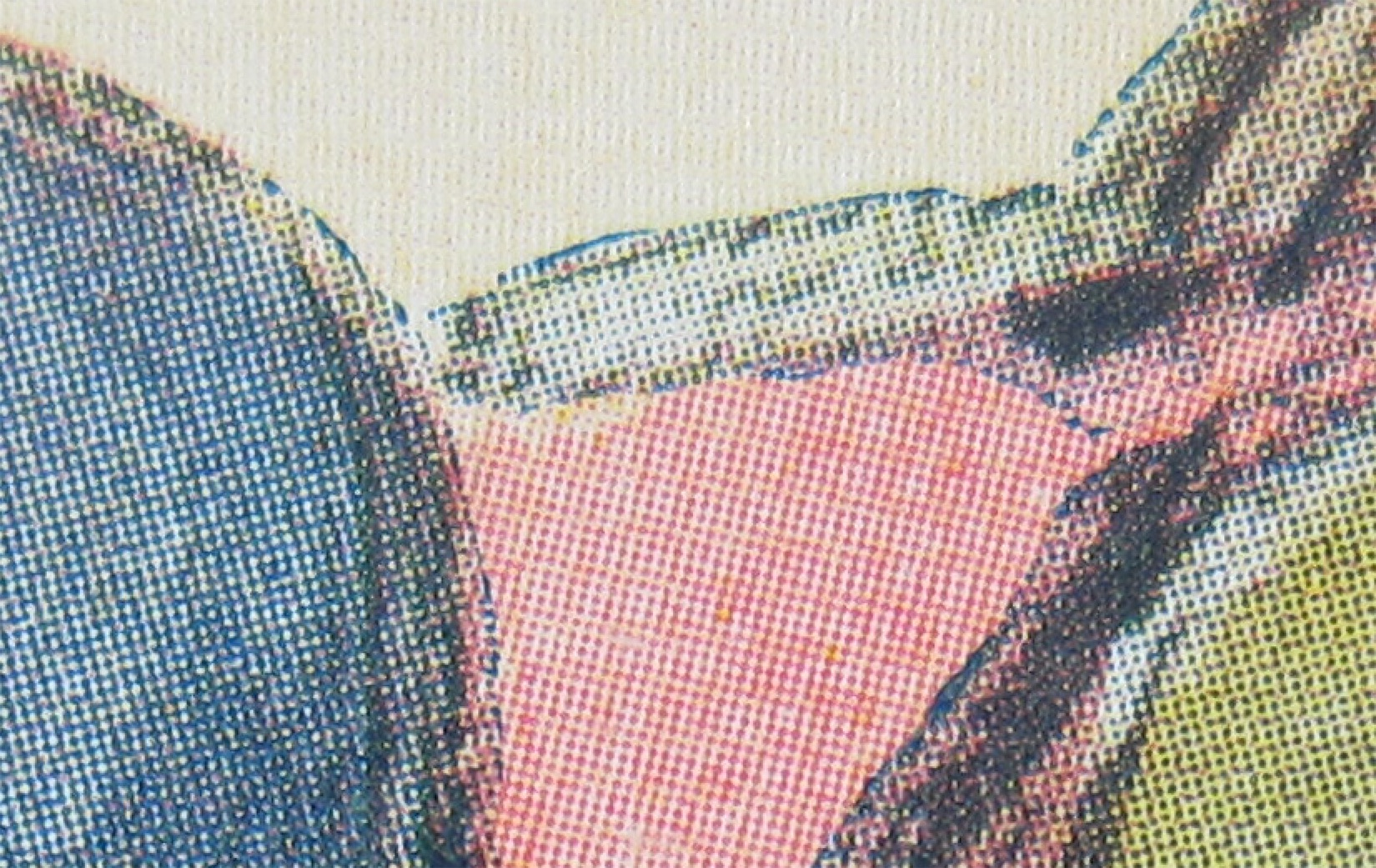 Magnification of halftone dots, showing slight mis-registration. Photo by the author from copy held in BAnQ, Montreal.